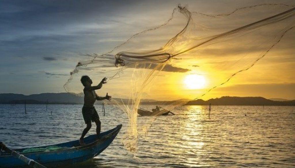 cast a wide net